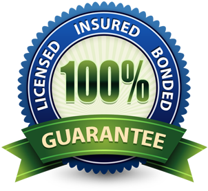 Licensed-Insured-Bonded-Badge-100%-guarantee